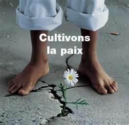 Cultivons la paix dans -Reflexions Cultiver-la-paix
